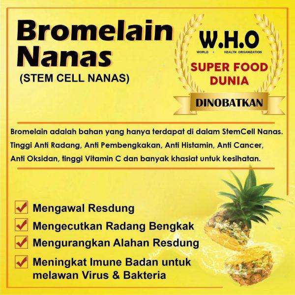 bromelain-nanas-01-1.jpg